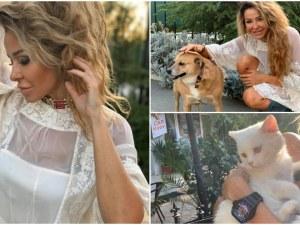 Голямото сърце на пловдивската дизайнерка Петя Джофра - за животните с любов