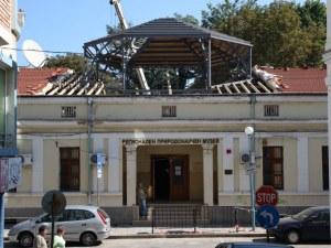 Пеперудата на кралица Александра каца в Природонаучния музей в Пловдив