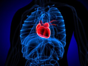 Какво се случва в тялото ни, когато някой разбие сърцето ни