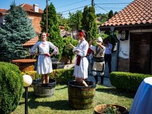 Вино се лее в Брестовица! Гроздоберът стартира с фолклорна програма и кулинарни изкушения