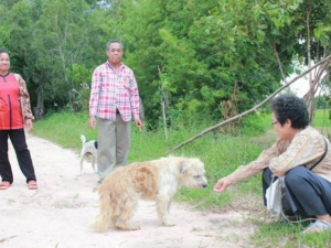 Забравено куче чака стопаните си на бензиностанция 4 години