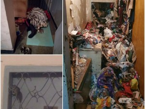 Хорър филм в Пловдив! Зараза се стеле в жилищен блок, плъхове пълзят по етажите, а жена мъкне боклуци 20 години