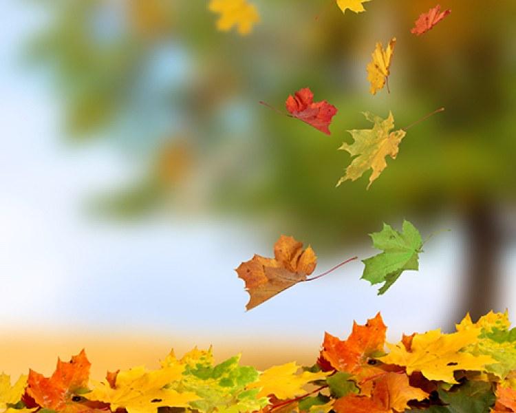 Есента идва с топло време, живакът скача до 30 градуса