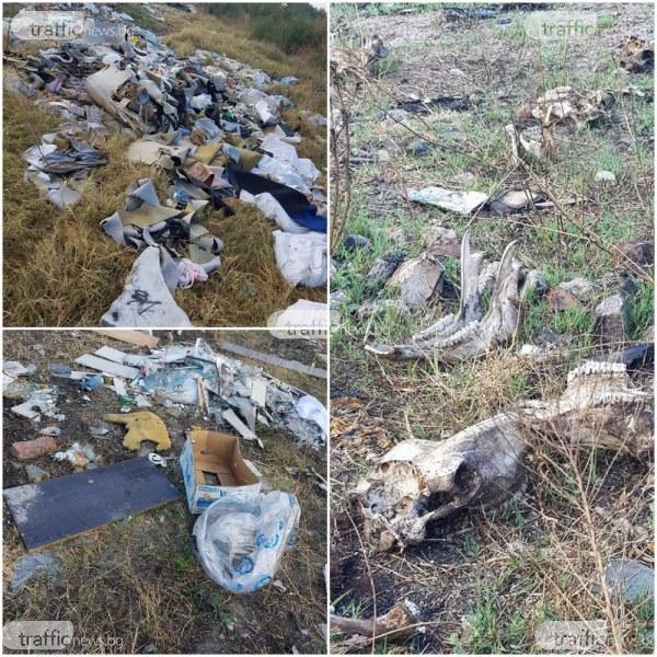 Полицията тръгва по стъпките на фирмите, превърнали поляна в Пловдив в сметище