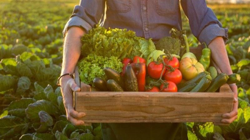 Кои са зеленчуците, които не трябва да се слагат в едно и също ястие?