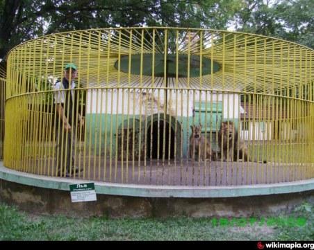 Експерт: Всички животни от зоопарка в Разград трябва да бъдат изведени