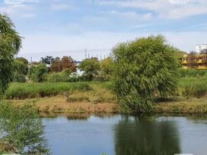 Спряха търсенето на изчезналия мъж в река Марица
