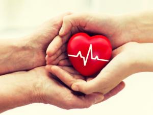 Над 1000 българи чакат за трансплантации, 4000 са на хемодиализа