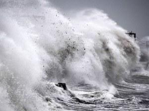 Тайфунът Хагибис взе 14 жертви, рани над 120 човека