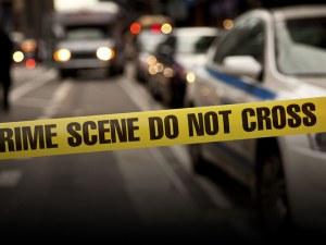 Синът на холивудски актьор уби майка си, полицаи го застреляха