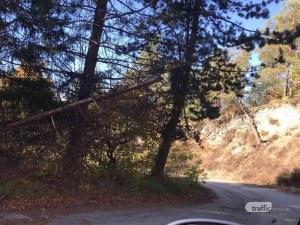 Две пазарджишки села с жалба до министъра заради опасен път