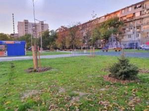 Жалко! Колко струва да откраднеш борче от центъра на Пловдив?