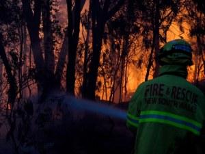 Невиждани пожари опустошават Австралия