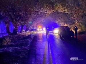 Кола се заби в дърво край Пловдив, водачът е тежко пострадал