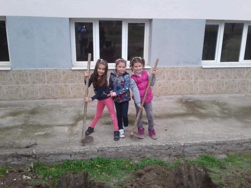 Зелена инициатива завладя Брестовица, жителите засадиха над 100 дръвчета