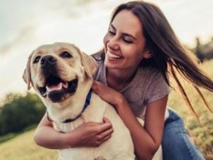 Крещенето депресира кучетата, обучават се по-добре с търпение