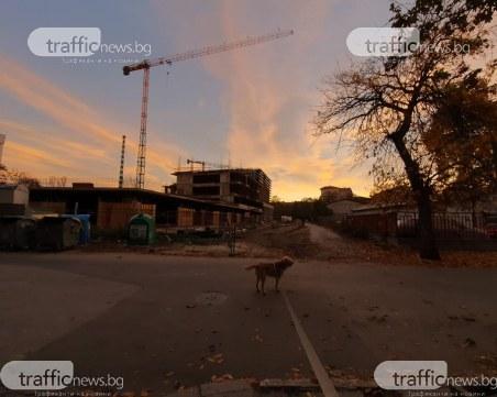 Бизнесът с имоти, строителство и култура в Пловдив процъфтява, бум на работните места