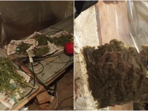 Заловиха 36-годишен дилър с над 2 килограма марихуана