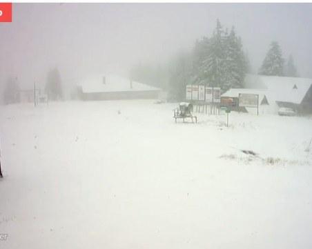 Пампорово побеля! Сняг заваля и на други места в Родопите