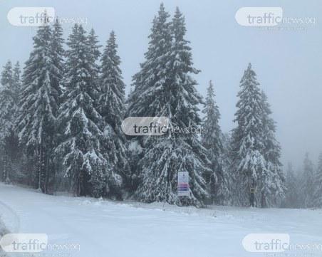 Снежната покривка на връх Снежанка вече е 20 см