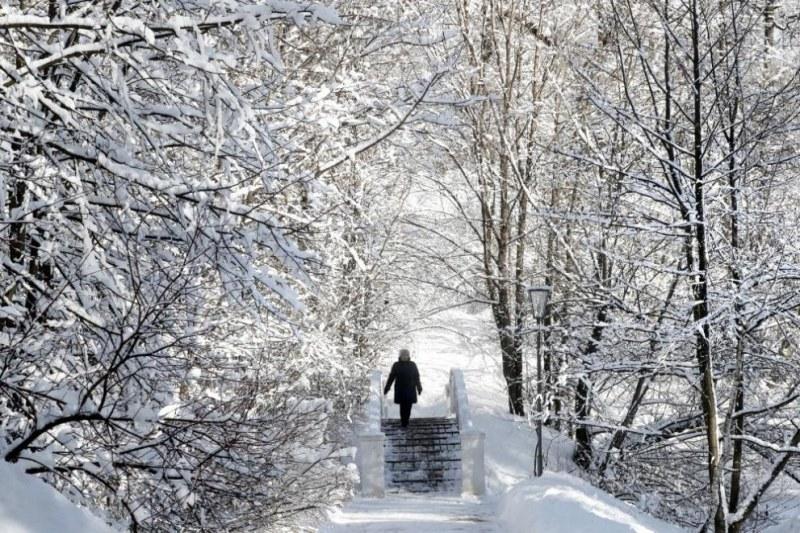 Мека зима в Европа и у нас, сочи световната прогноза
