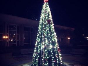 Красива елха светна в сърцето на спа столицата Хисаря