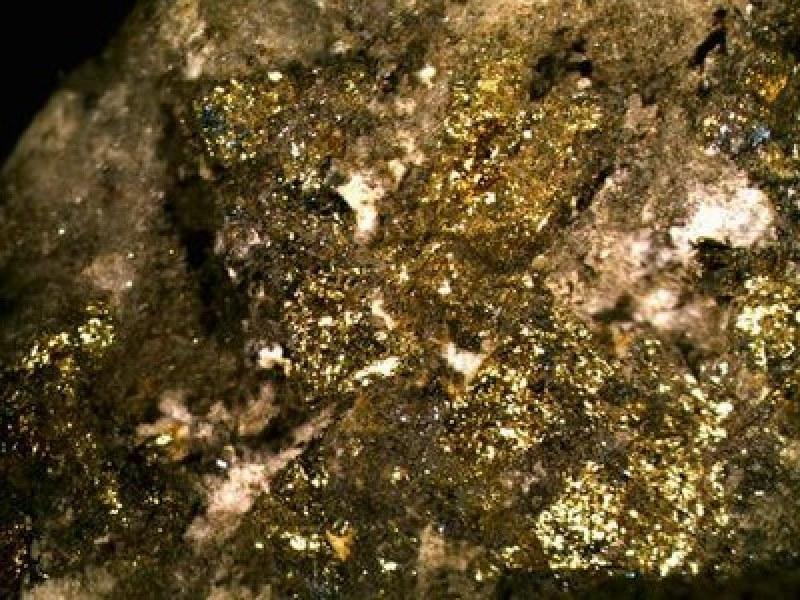 Японци намериха злато за 720 милиона на 180 км от София