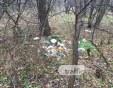 Листата опадаха - сметищата се показаха! Един от дробовете на Пловдив отново е залят с боклук