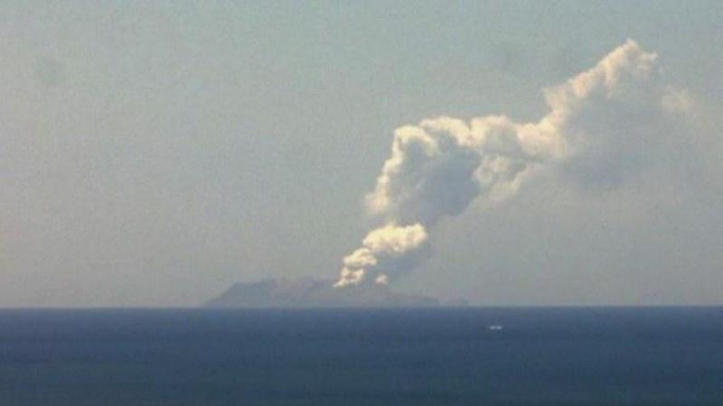 Вулкан изригна в Нова Зеландия, в района е имало над 100 туристи