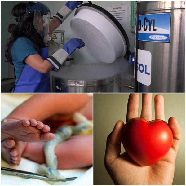Трудно ли е да спасиш живот? Ето как се става донор на стволови клетки