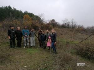 Медоносни дръвчета засадиха край Пловдив
