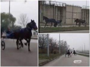 Бързи, яростни и много опасни! Роми си правят кушии на пловдивски булевард