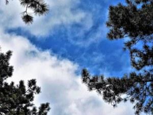 Жега през декември - живакът ще подгони 20 градуса днес