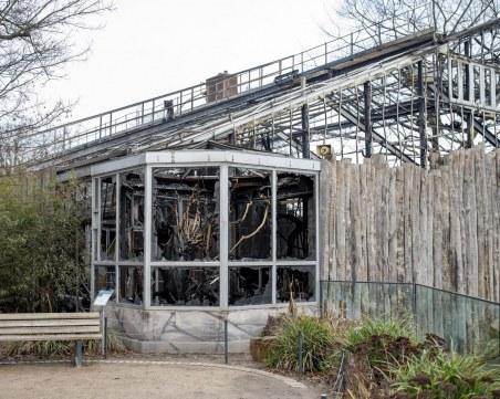 Майка и две дъщери подпалили зоопарка в Крефелд