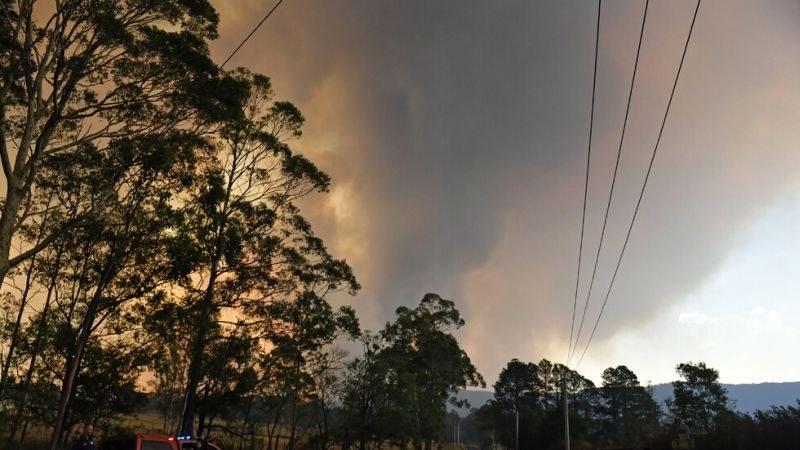 Знаменитости правят дарения в полза на пострадалите от пожарите в Австралия