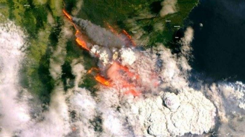 Няма данни за пострадали българи при пожарите в Австралия