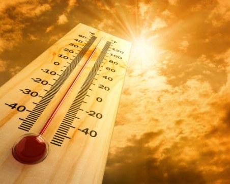 2019 г. - втората най-топла досега