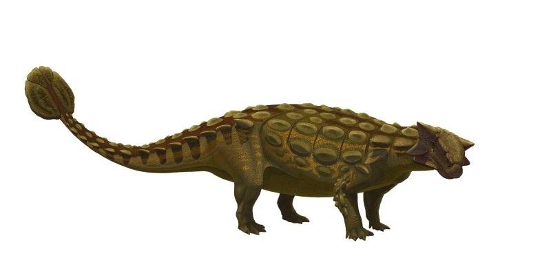 Имало ли е динозаври по българските земи?