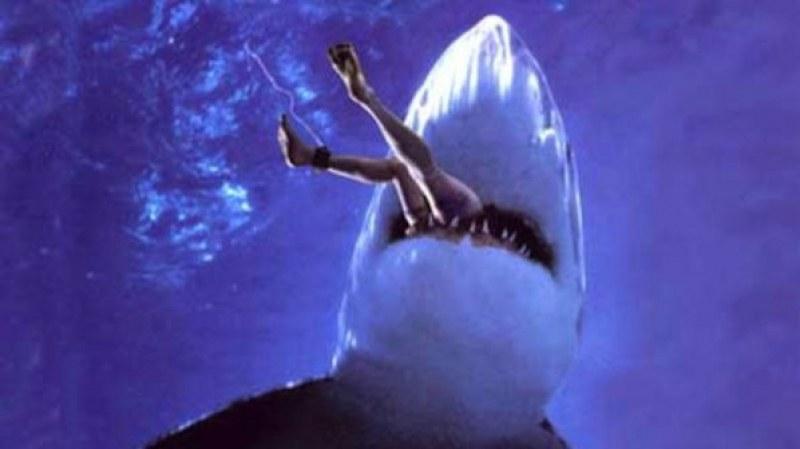 Трагедия! Акула изяде 21-годишен австралийски футболист