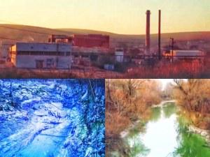 Разследване на TrafficNews: Завод точи вода от Дунав и връща отпадъците си в реката