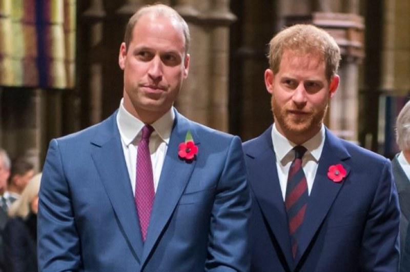 Скарани ли са принцовете Хари и Уилям?