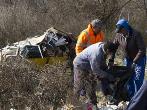 Откриха яма с кости на животни край Стара Загора