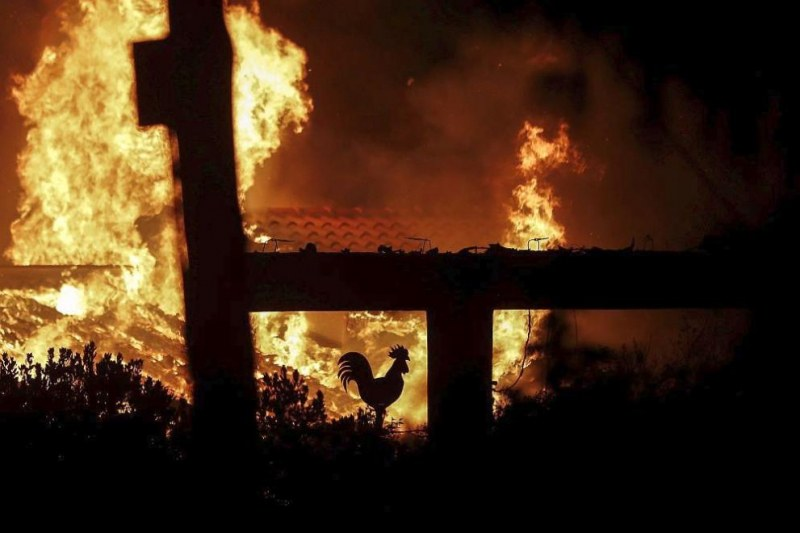 Мъж загина при пожар в обор край Асеновград
