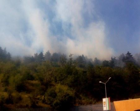 Пожар гори край Дуранкулашкото езеро