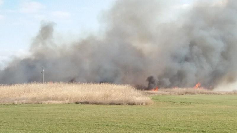 Овладяха пожара, бушуващ край Орловото блато