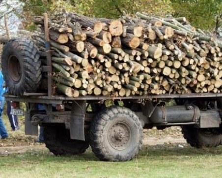Полицаи и горски нахлуха в ромската махала в Раковски, има санкционирани
