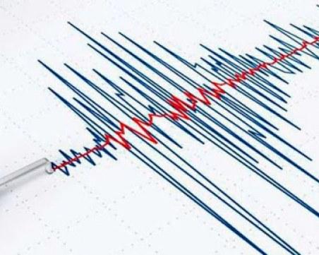 Няколко земетресения разтресоха остров Крит