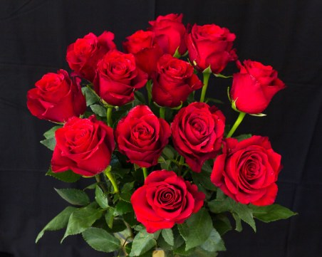 60 милиона рози изнасят от Турция за Свети Валентин