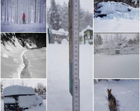 Четири семейства блокирани от снега край Дедево, пети ден до там не стига снегорин