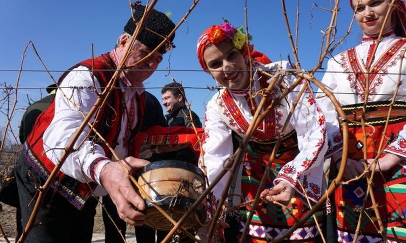Вино се лее днес в Пловдивско, зарязват се лозя, земята се люлее от кръшни хора